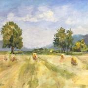 Haymaking near Weilersbach
