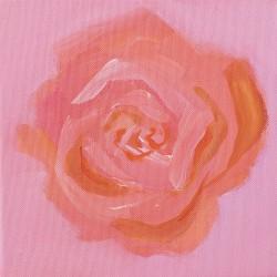 31-Rose-peach-pink